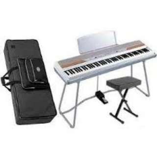 Korg SP250 Piano Rental