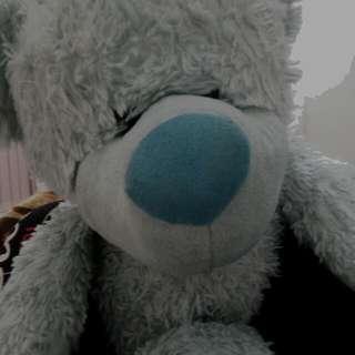 Teddybear Wants Blinds :/