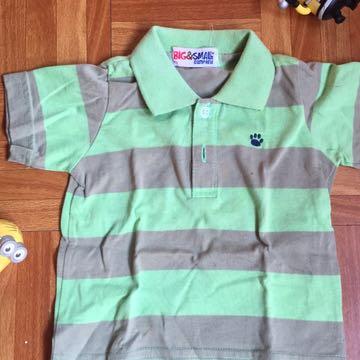 Green Stripe Polo