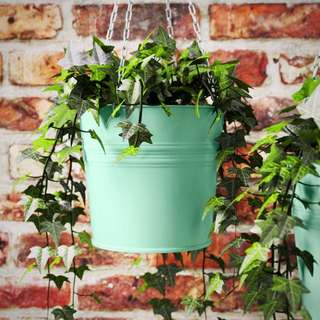Ikea Socker Hanging Planter - MINT & Pastel Purple