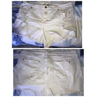 City Chic White Ripped Shorts