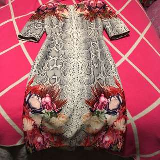 Camilla And Marc Vector Dress Size 10