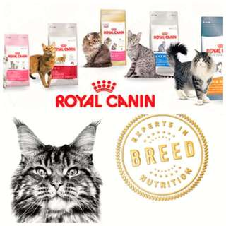 Royal Canin Cat Food All Types Available