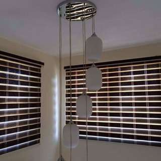 Window Cover & Blinds