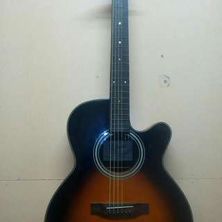 Takamine Acoustic Guitar D series