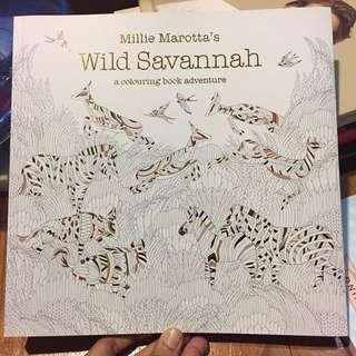 Wild Savannah A Colouring Book Adventure