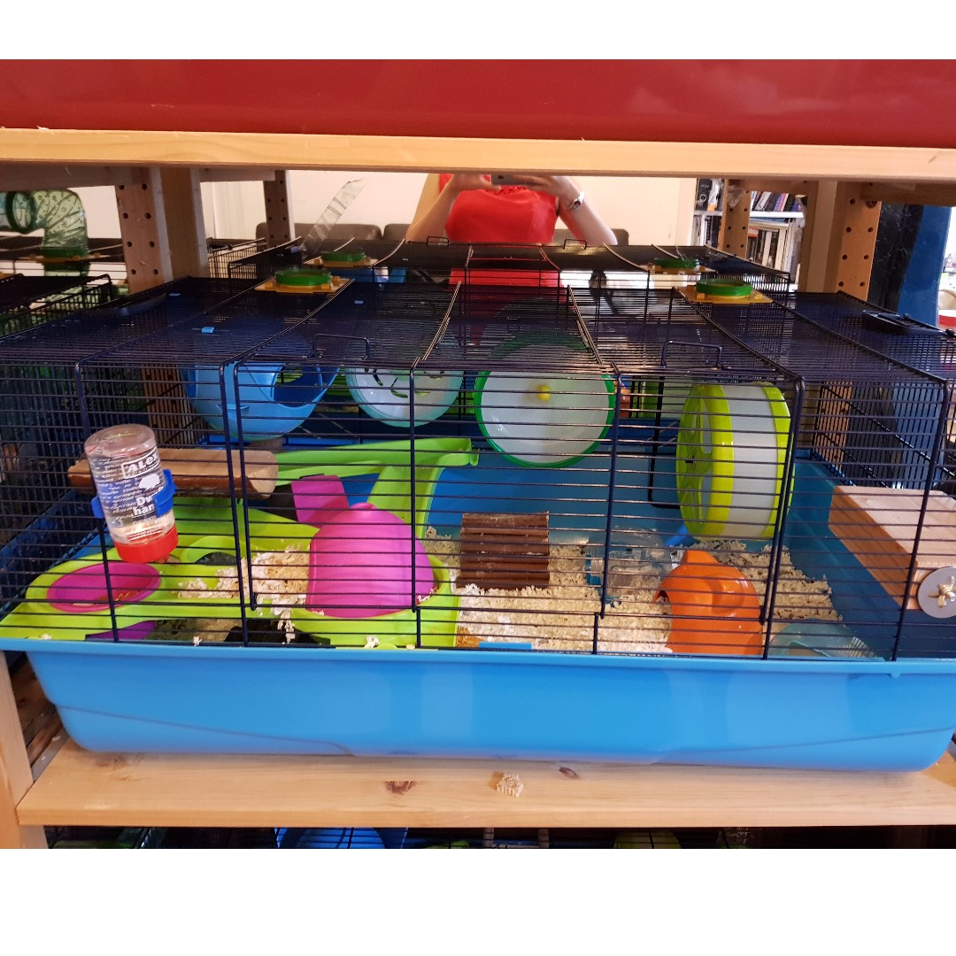 hamster cages perfect for syrian hamsters on carousell. Black Bedroom Furniture Sets. Home Design Ideas