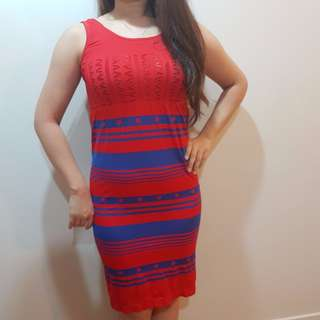 Red & Blue Slim Dress