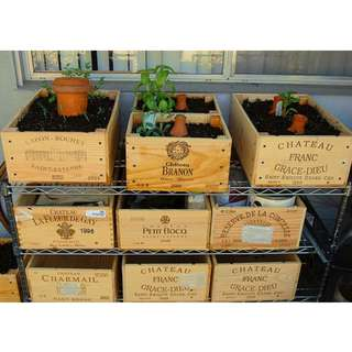 Wine Crates For Plants