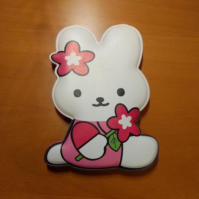 Cute Bunny Mirror With Comb