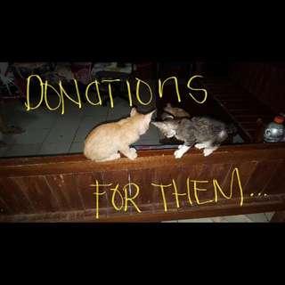 Donations Please~