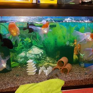 2 Feet Fish Tank $80 Only(bought @$120), Condition 9/10.
