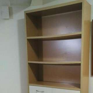 Bookshelf Cabinet (used)