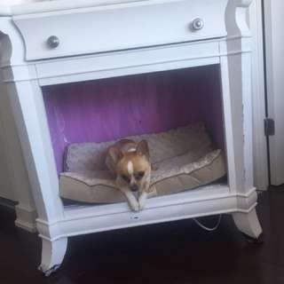 Pet Bed, End Table
