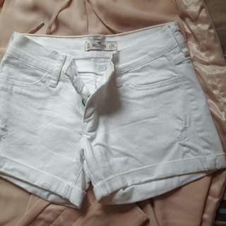 hollister white short