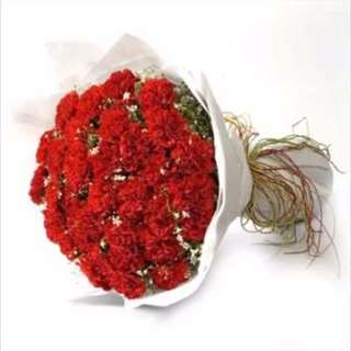 Full Red Carnation Bouquet - Emma