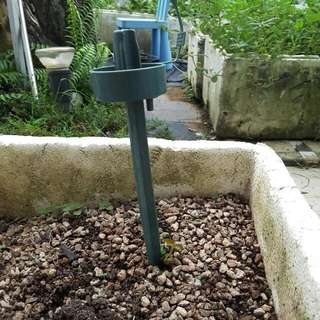 Self Watering Devices
