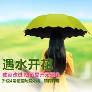 韓版創意水印花晴雨傘 遇水開花折疊黑膠太陽傘 公主傘 雨傘(黑膠防曬款)