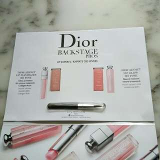 Dior Backstage Pros Lip Experts - Dior Addict Lip Maximizer Collagen Activ Lip Gloss 001 Pink & Lip Glow 001 Pink Trial Palette