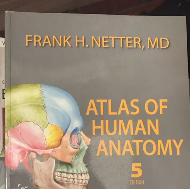 Netters Atlas Of Human Anatomy 5th Edition Books Books On Carousell