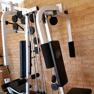 ORBIT Complete Home Gym Set