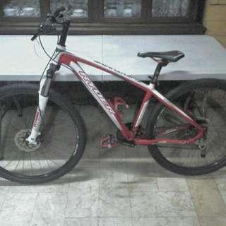 Ryder Mountain Bike 29er