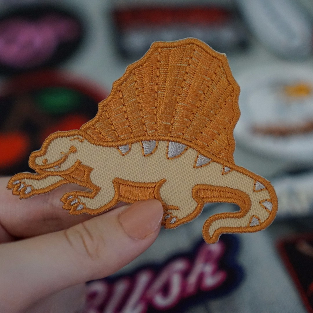 Dinosaur patch