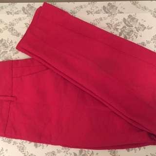 Zara Pants/Capris Pink