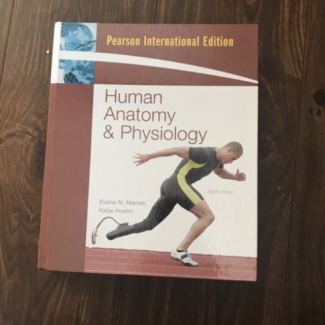 Human Anatomy And Physiology (nursing)
