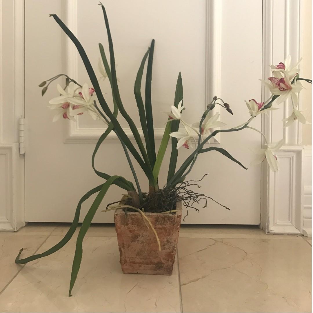 Plastic Orchid Decor
