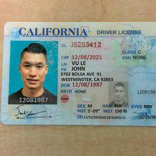 Novelty Documents And IDs Realistic