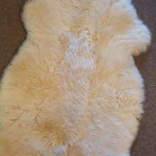 Brandnew Sheepskin To Keep Your Baby Warm This Winter