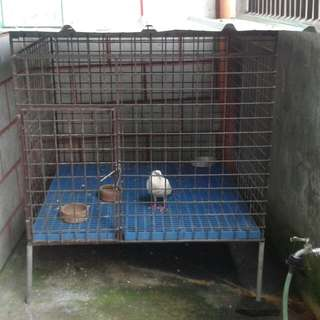 Dog Cage For Medium To Large Breed