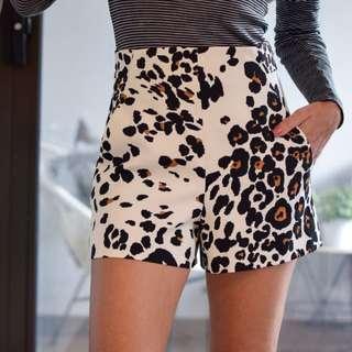 Zara - New High Waist Leopard Shorts - Size 6