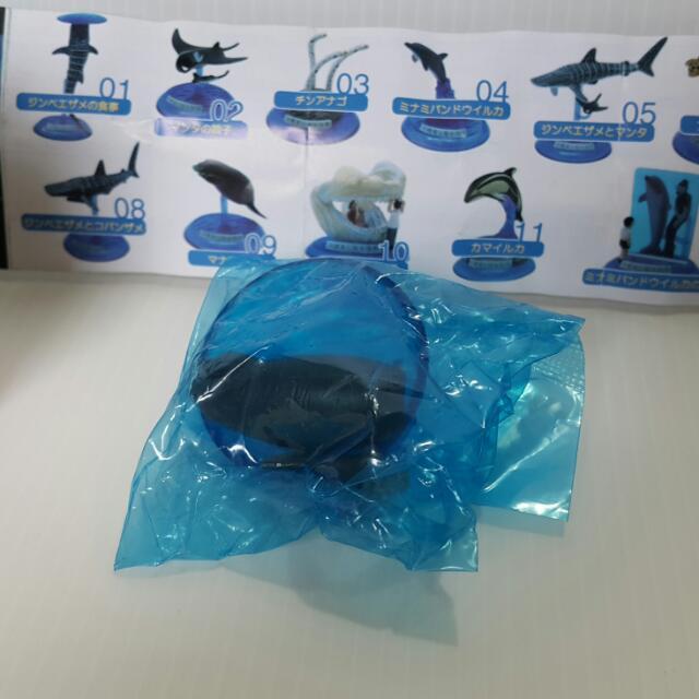 【黑皮GO】沖繩海洋限定扭蛋/公仔玩具