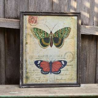 Large Vintage Inspired Butterfly Print with Weathered Frame
