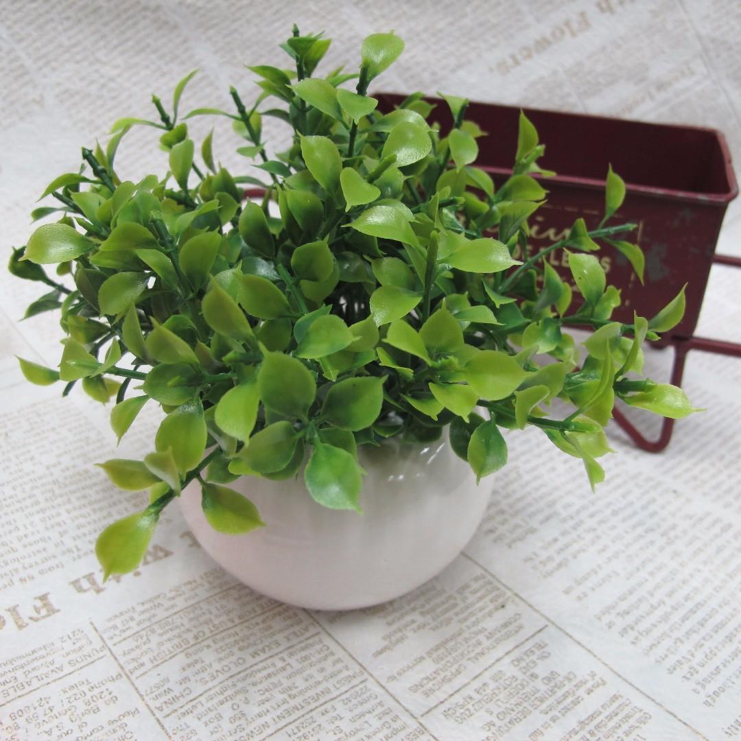 【樂提小舖】07017 竹柏葉小盆栽 辦公桌佈置 綠色植物 綠色小盆栽 zakka雜貨 文創手作 人造盆栽 仿真植物