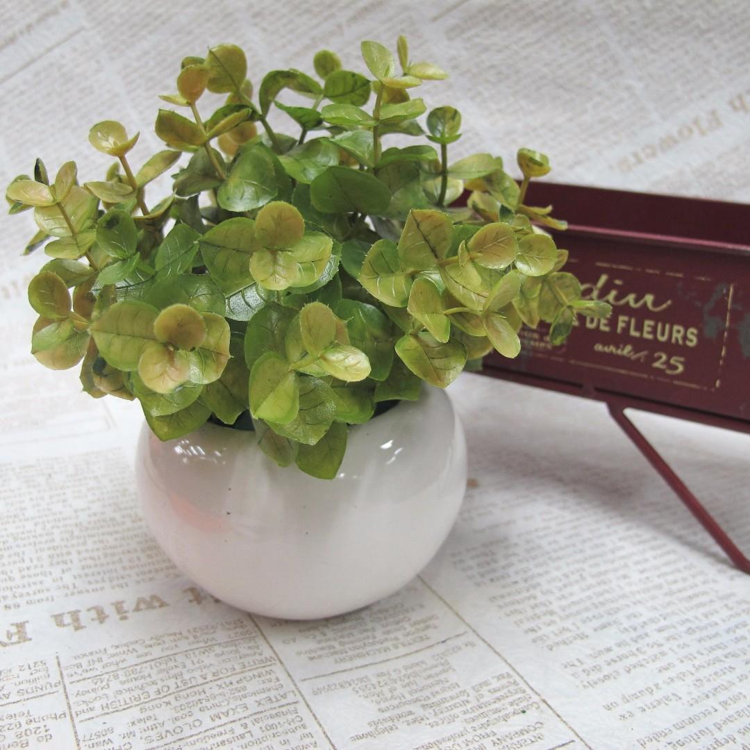 【樂提小舖】07018 尤加利小盆栽 辦公桌佈置 綠色植物 綠色小盆栽 zakka雜貨 文創手作 人造盆栽 仿真植物
