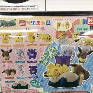 ✨神奇寶貝扭蛋-全新日本代購剛剛扭到✨
