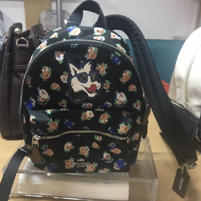 Small Body Bag COACH