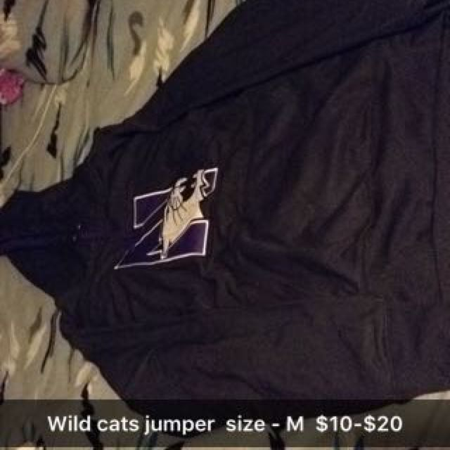 Wildcats Jumper