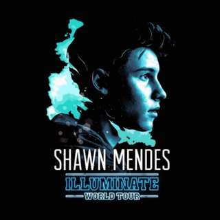 *REDUCED PRICE* Shawn Mendes Illuminate Tour Tickets For Toronto At The ACC