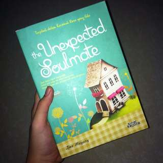 'the unexcpected soulmate' novel