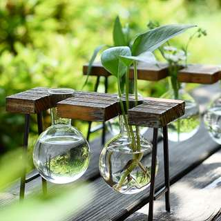 CREATIVE HYDROPONICS DECORATIONS