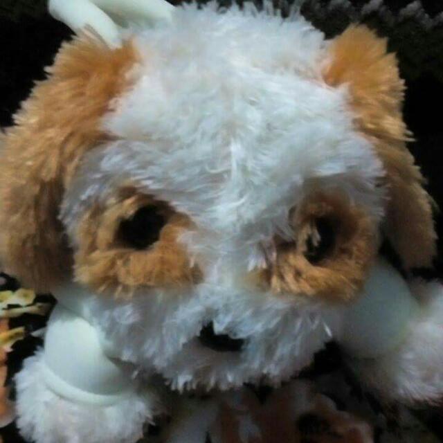 Cutiee Patotiee Puppy Bag