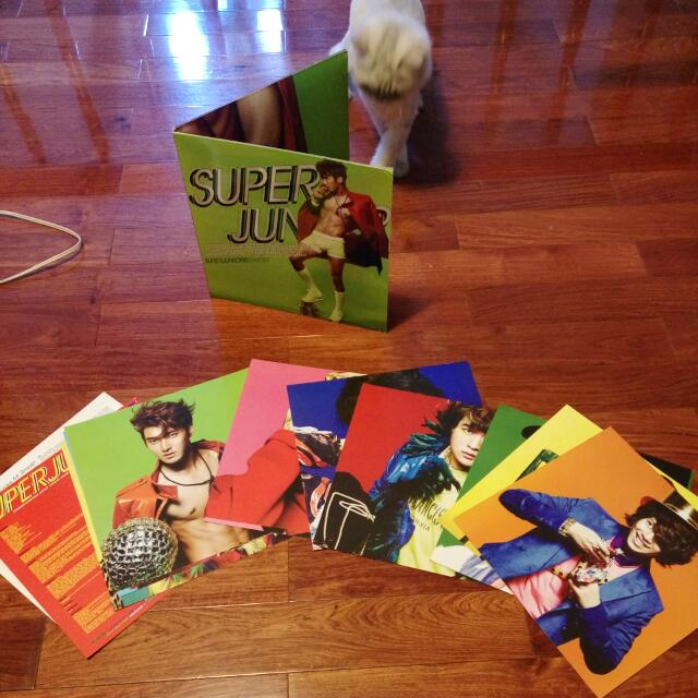 SUPER JUNIOR 極新