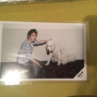 Xiumin official postcard