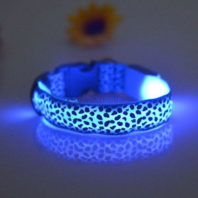 Blue Size L Night Safety Collar Light Up Leopard Nylon LED