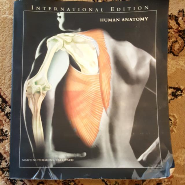 Human Anatomy By Martinitimmonstallitsch 5th Edition Books