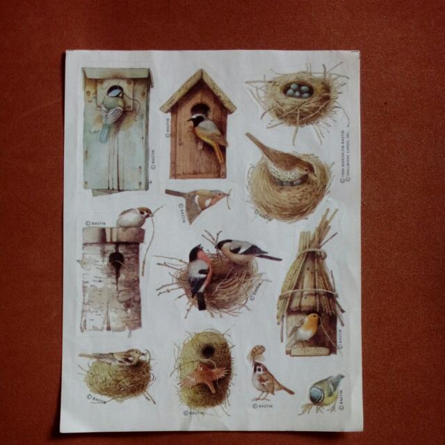 Sticker Burung